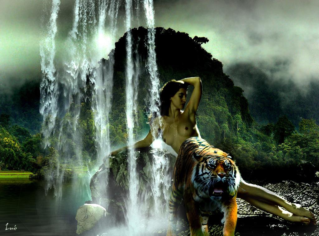 El ba o del tigre los cuatro elementos for Elementos del bano