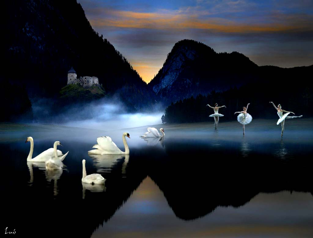 http://loscuatroelementos.files.wordpress.com/2009/01/lago-cinco-cisnes.jpg