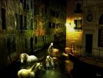 xxxfuga-caballos-venecia1