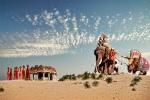 elefante y dino