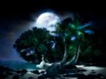 luna tropical