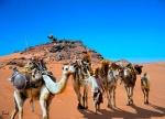 caravanas del sahara