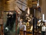 museo de historia natura