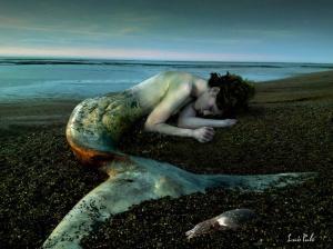 sirena-agonizante